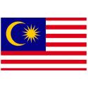 خودروهای مالزی
